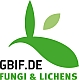 To GBIF-D Fungi and Lichens